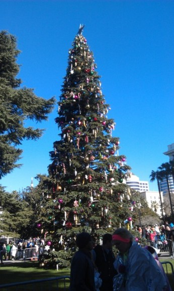 Christmas tree in front of the Capitol
