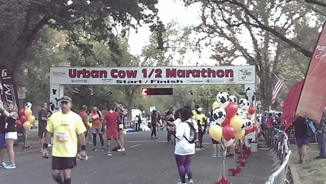 2016 Urban Cow Half Marathon RaceRecap