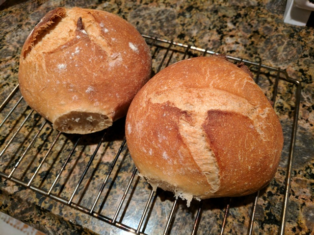 Whole wheat boules